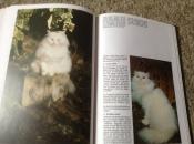 Studieboeken Een Boek van honden en een boek van katten ,lieve huisdieren
